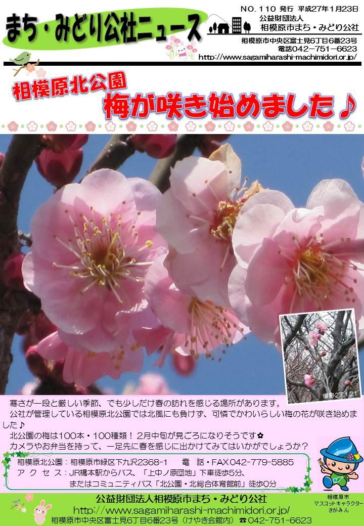 公社ニュース110号(15.1.23).jpg